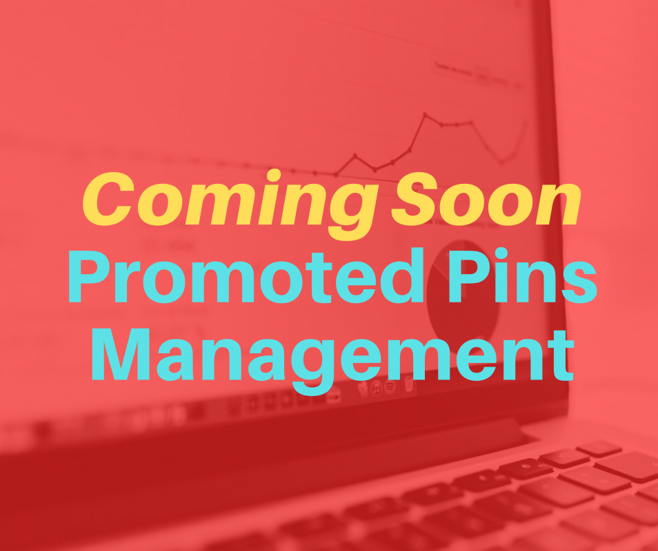 promoted pins management